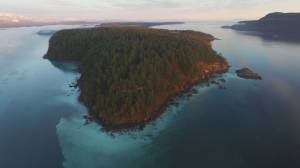 Scientists monitor 'blob' off B.C. coast