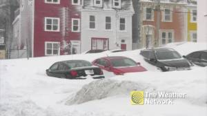 Cars, doors buried under mounds of snow as blizzard hits St. John's