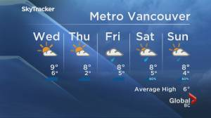 B.C. evening weather forecast: Jan. 12 (02:16)