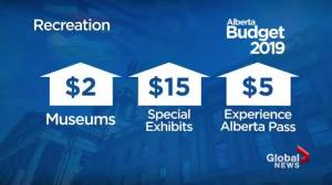 Alberta budget 2019: What's in it for families?