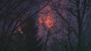 "Canada's fire season set to be ""well above average"""