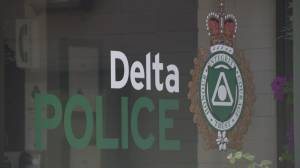 City councilor demands more information from Delta PD over scandal involving chief's wife (02:25)
