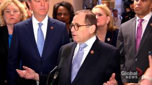Nadler says opposition to witnesses in Trump impeachment trial shows complicity of 'cover up'