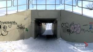 No easy solution to safety, crime around pedestrian underpasses: Saskatoon police