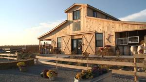Established GTA winery putting down roots near Port Perry (01:54)