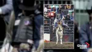 Entire rodeo season, including CFR, in question due to COVID-19