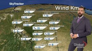 Edmonton weather forecast: Monday, Jan. 25, 2021 (02:54)