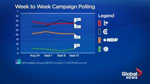 Canada election: Liberals and Conservatives in dead heat as campaign enters final days, poll finds (03:14)