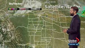 Edmonton weather forecast: Monday, June 21, 2021 (03:35)