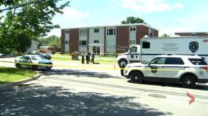 Matthew Raymond murder trial hears from forensic analysist (01:34)