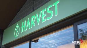 Harvest: A Farm-to-Table Eatery