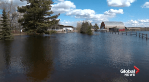 Leduc County man experiences unusual flood