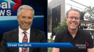 Great Gardens: Tips for veggie gardening (04:55)