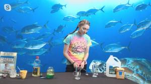 Learn Something New: Simple science experiments