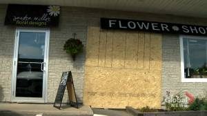 Rothesay, N.B., flower shop damaged after weekend hit and run (01:50)