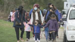 Nearly 1 in 2 parents say pandemic created new mental health problems for kids (04:27)