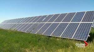 Village of Carmangay becomes latest southern Alberta municipality to go solar (01:48)