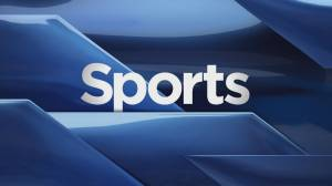Global Lethbridge Sports Recap: Oct. 28
