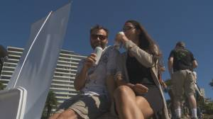Vancouver Park Board delays decision on drinking in parks