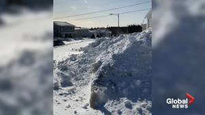 St. John's covered in mountains of snow after record-breaking storm