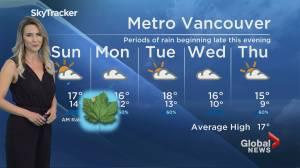 Evening Weather Forecast