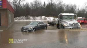 Ontario sees heavy rain, flooding as storm moves through region