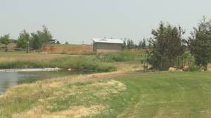 Visitors to Lethbridge park upset with maintenance, pulling weeds themselves (01:47)