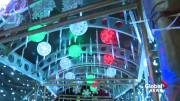Play video: Edmontonians flock to see Christmas lights during a very dark year