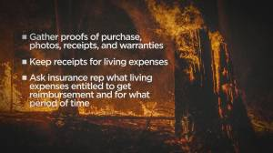 B.C. wildfire insurance and what you need to know (02:12)
