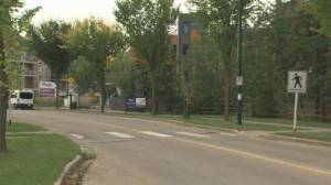 Edmonton student shares video that shows the dangers of crosswalks