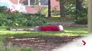 Heat wave presenting additional risks for Lethbridge's homeless population