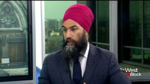 Progress made on CUSMA, but still no decision on support: Jagmeet Singh