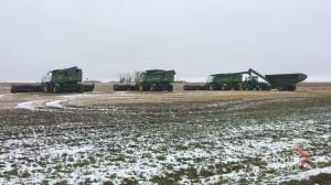 Snow delaying harvest in Saskatchewan for farmers