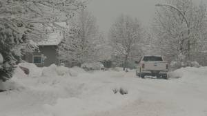 City of West Kelowna is asking residents to be patient as plow and sanding trucks make their way across the community in the wake of the latest snowstorm