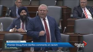Black community responds to Doug Ford's claim Canada doesn't have 'systemic' racism like U.S.