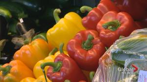 New Calgary fund aims to bring stability to the Alberta food industry (04:10)