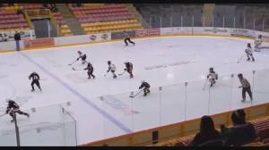 Chilliwack Minor Hockey pauses season amid COVID-19 (01:16)