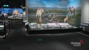 Royal Alberta Museum documenting COVID-19 in Alberta (04:34)