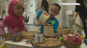 Ottawa and B.C. ink deal for a $10-a-day childcare (01:51)