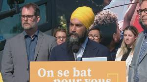 Federal Election 2019: NDP Leader says they should respect needs, desires of Quebec but work 'toward unity'