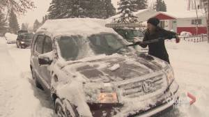 Calgary hit by 20 to 40 cm of snow, police report 75 collisions (01:35)