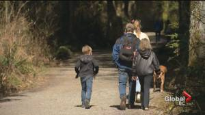Free day passes return to busy B.C. parks (00:38)