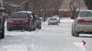 City-wide parking bans to be part of Edmonton's beefed up snow clearing efforts (01:49)