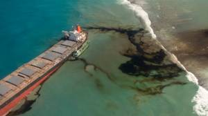 Mauritius oil spill: Experts fear catastrophic ecological disaster (02:39)