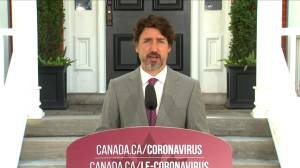 Coronavirus: Situation in the U.S. 'highlights' Canada's need to remain vigilant, Trudeau says