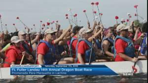 Community Events: Dragon Boat Race & Festival 2019