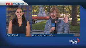 Global News Morning weather forecast: August 3, 2021 (00:55)