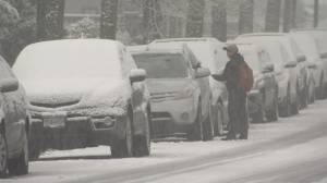 Another snowstorm causes problems in Metro Vancouver
