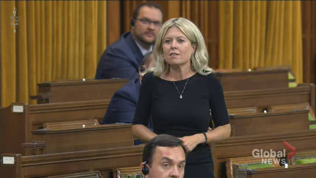 Click to play video 'Coronavirus: Conservative MP grills Liberals on delays in rapid COVID-19 testing availability'