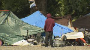 Vancouver Park Board consider overnight camping in parks